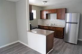 medical center apartment with morden kitchen